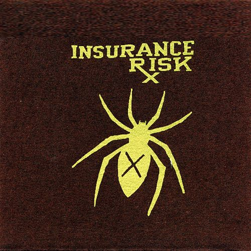 Insurance Risk - How Much More 7