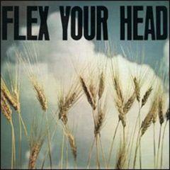 V.A. Flex Your Head CD