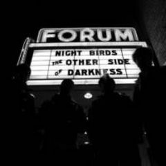 Night Birds - The Other Side Of Darkness LP (US Pressung)