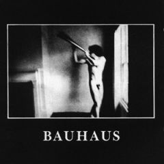 Bauhaus - In The Flat Field LP