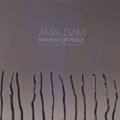 Amalgam - Prayer For Peace LP