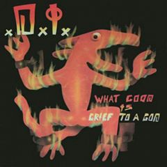 D.I. - What Good Is Grief To A God LP