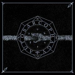 Cross Stitched Eyes - Autosarcophagy LP